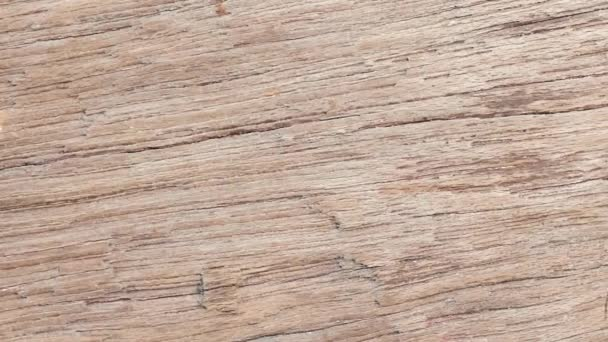 close up on wood texture.