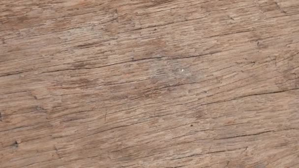 Detailní záběr na texturu dřeva.