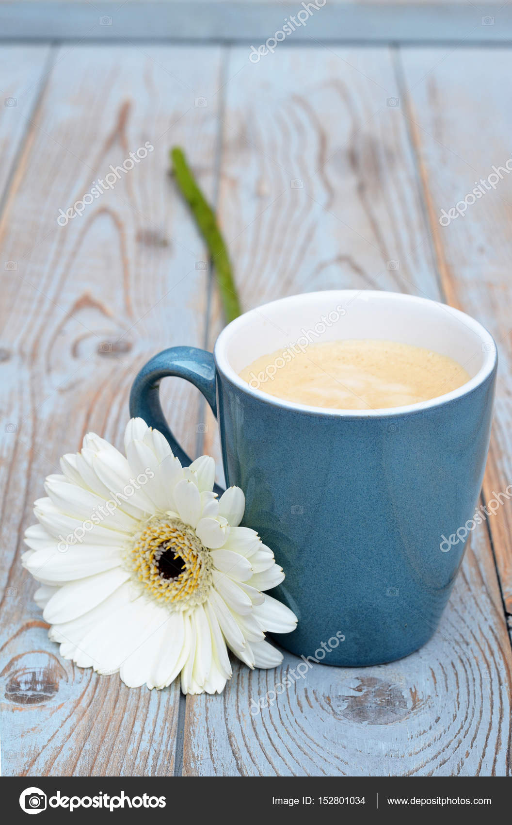 Cup Of Coffee In A Blue Mug On A Old Used Grey Wooden Background With A White Gerber Daisy Decoration Stock Photo Image By Trinetuzun 152801034