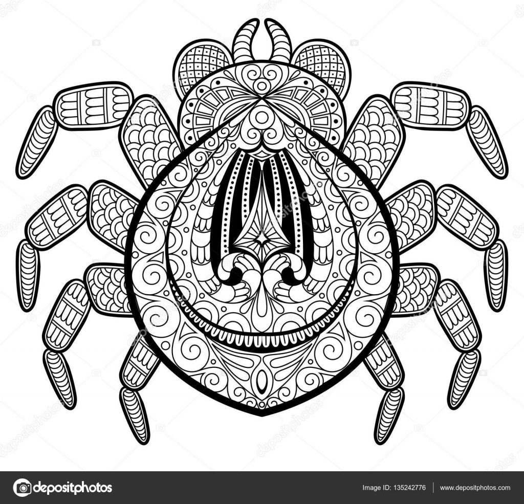 spider in zentangle style for tattoo print or t shirt