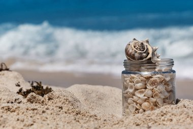 Shells in a glass jar on the sand beach, tropical landscape