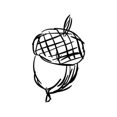 Sketch of hand drawn acorn