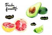 avocado, grapefruit and lime