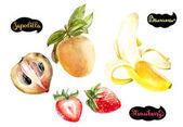 Photo Sapodilla, banana, strawberry watercolor hand drawn illustration isolated on white background.