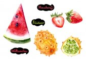 Kiwano, strawberries, watermelon hand drawn watercolor illustration isolated on white background.