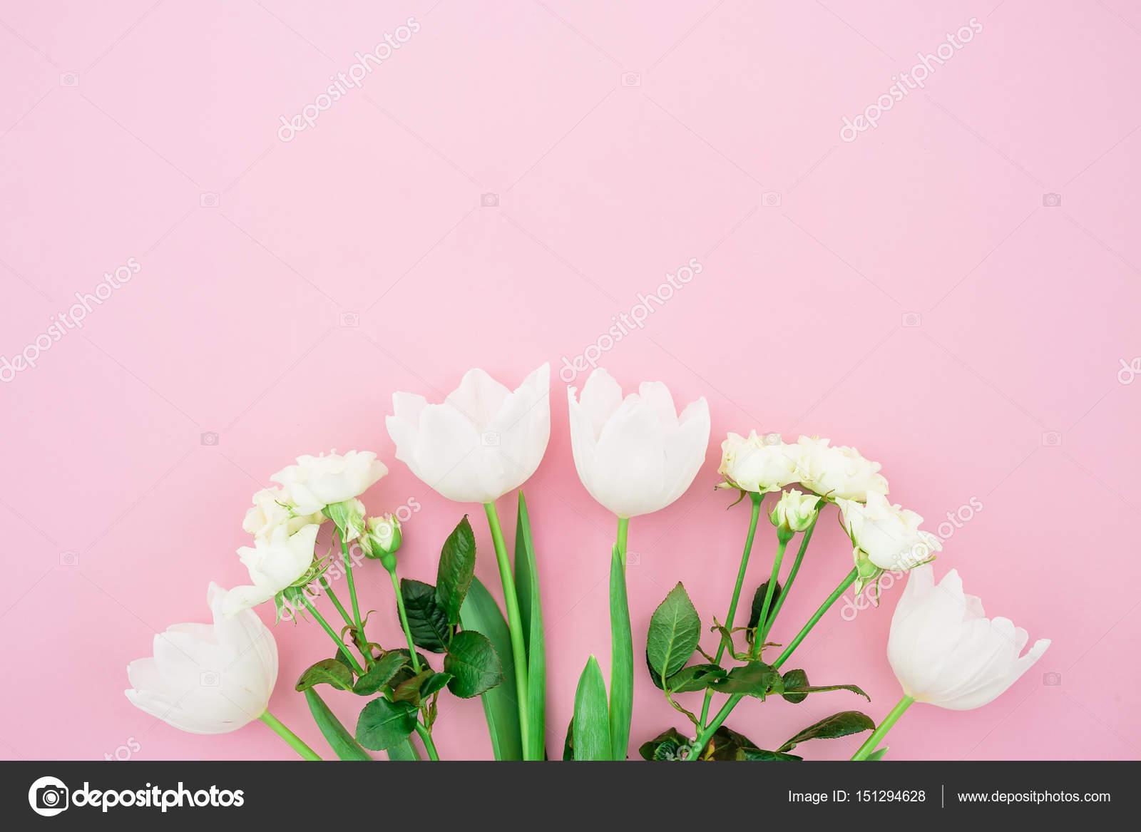 Beautiful Bright Flowers Stock Photo Keola 151294628