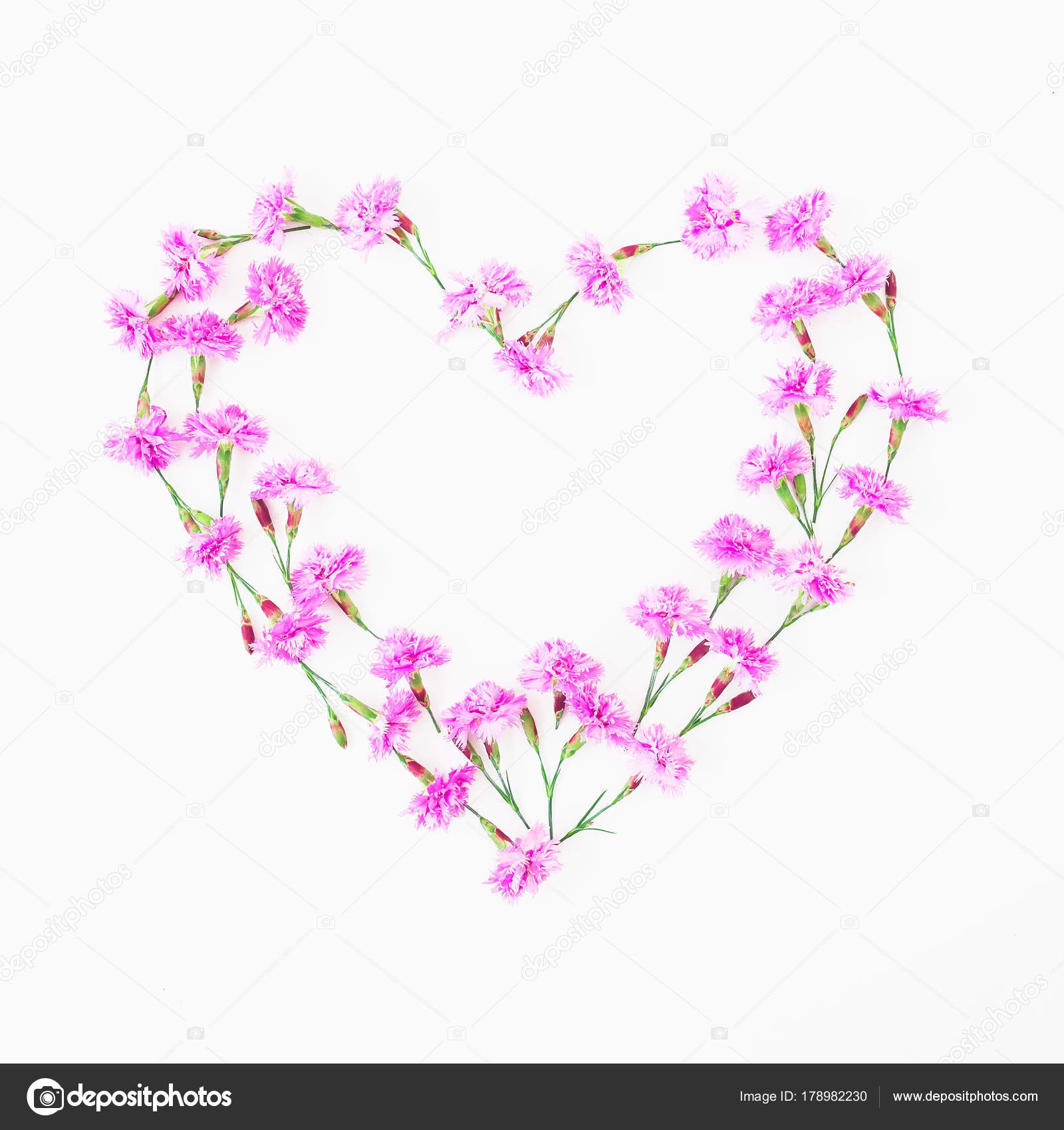 Heart made pink flowers white background valentine day flat lay heart made pink flowers white background valentine day flat lay stock photo mightylinksfo