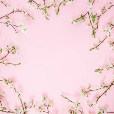 Floral frame of spring flowers isolated on pink background. Flat lay, top view. Spring time background. stock vector