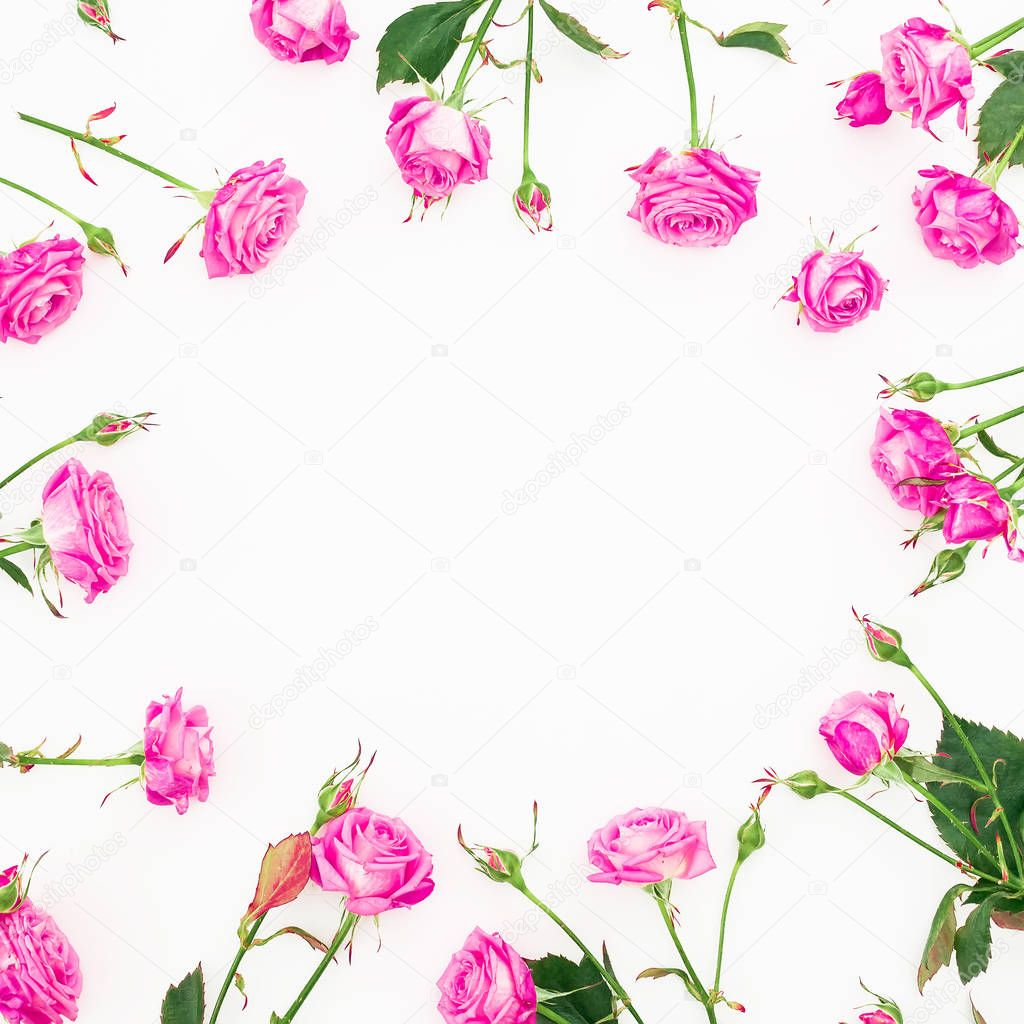 Floral composition with pink roses, branches and leaves on white background. Flat lay, Top view.
