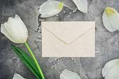 Fotografie bílá obálka s bílým Tulipán na šedé kamenné pozadí