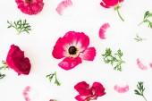 Pohled shora z čerstvých růžové květy s listy na bílém pozadí