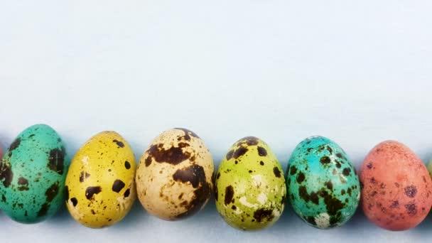 Quails color easter eggs on pastel blue background. Close up.