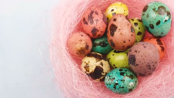Color easter quail eggs in pink nest on pastel blue background. Close up.