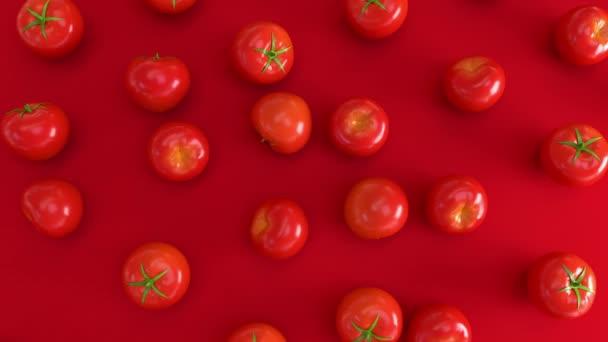 Abstraktní červená čerstvá rajčata na červeném povrchu. 3D zelenina jídlo vykresluje animaci. Jiná realistická rajčata. 4k bezešvé smyčky animace záběry.