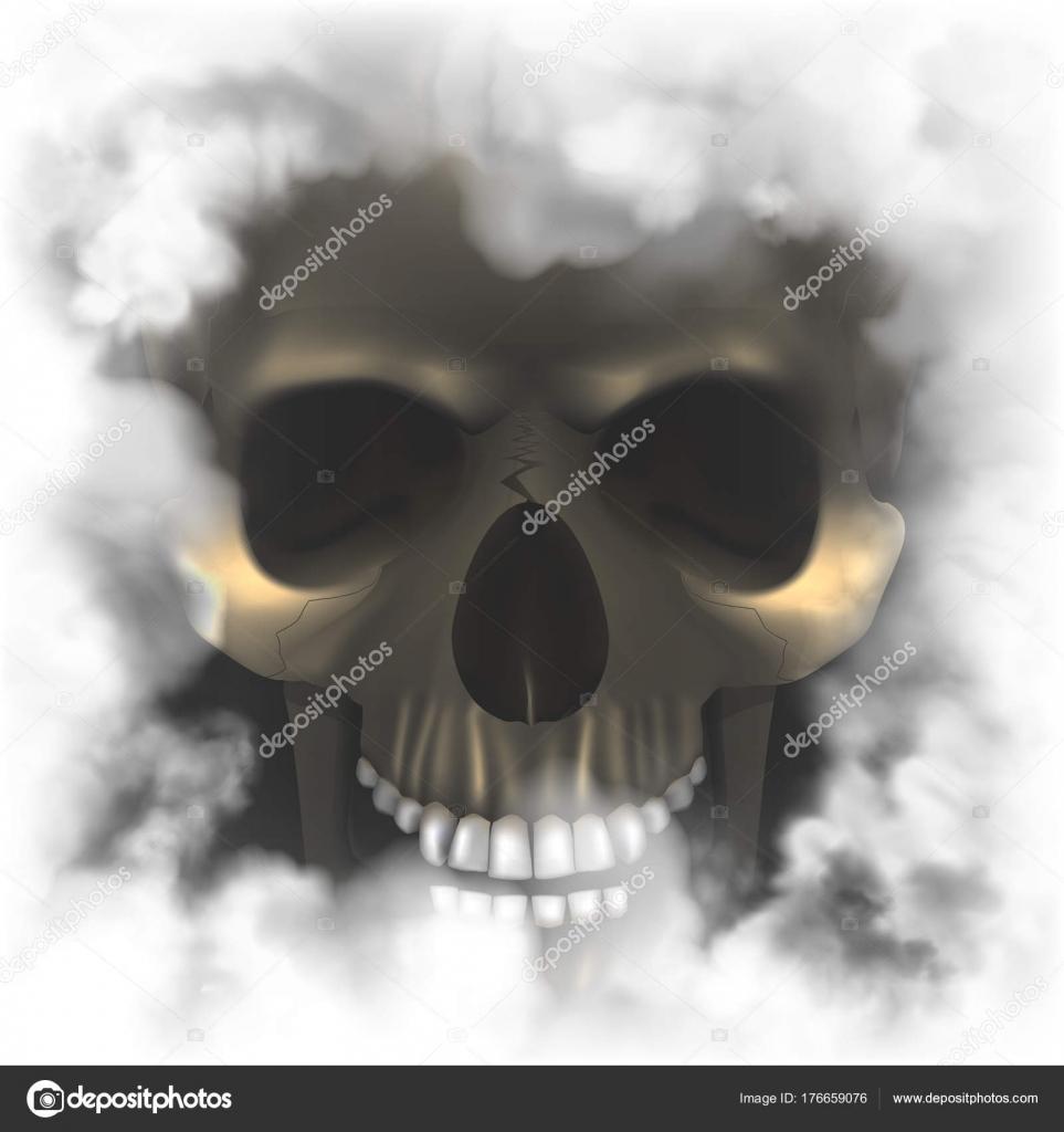 Cráneo realista en un marco de ahumado — Vector de stock ...