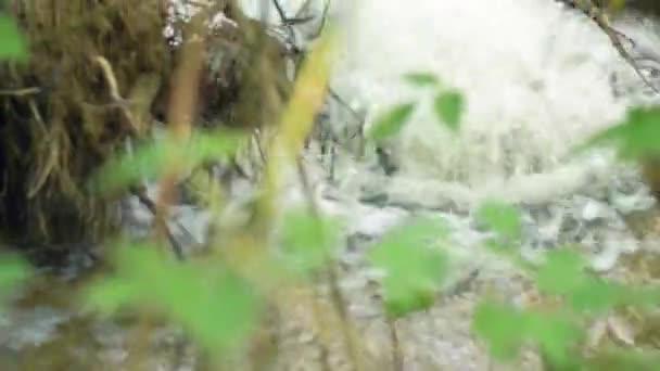 Wasser Aus Dem Boden Wald Austritt Von Städtischen Wasserleitungen ...