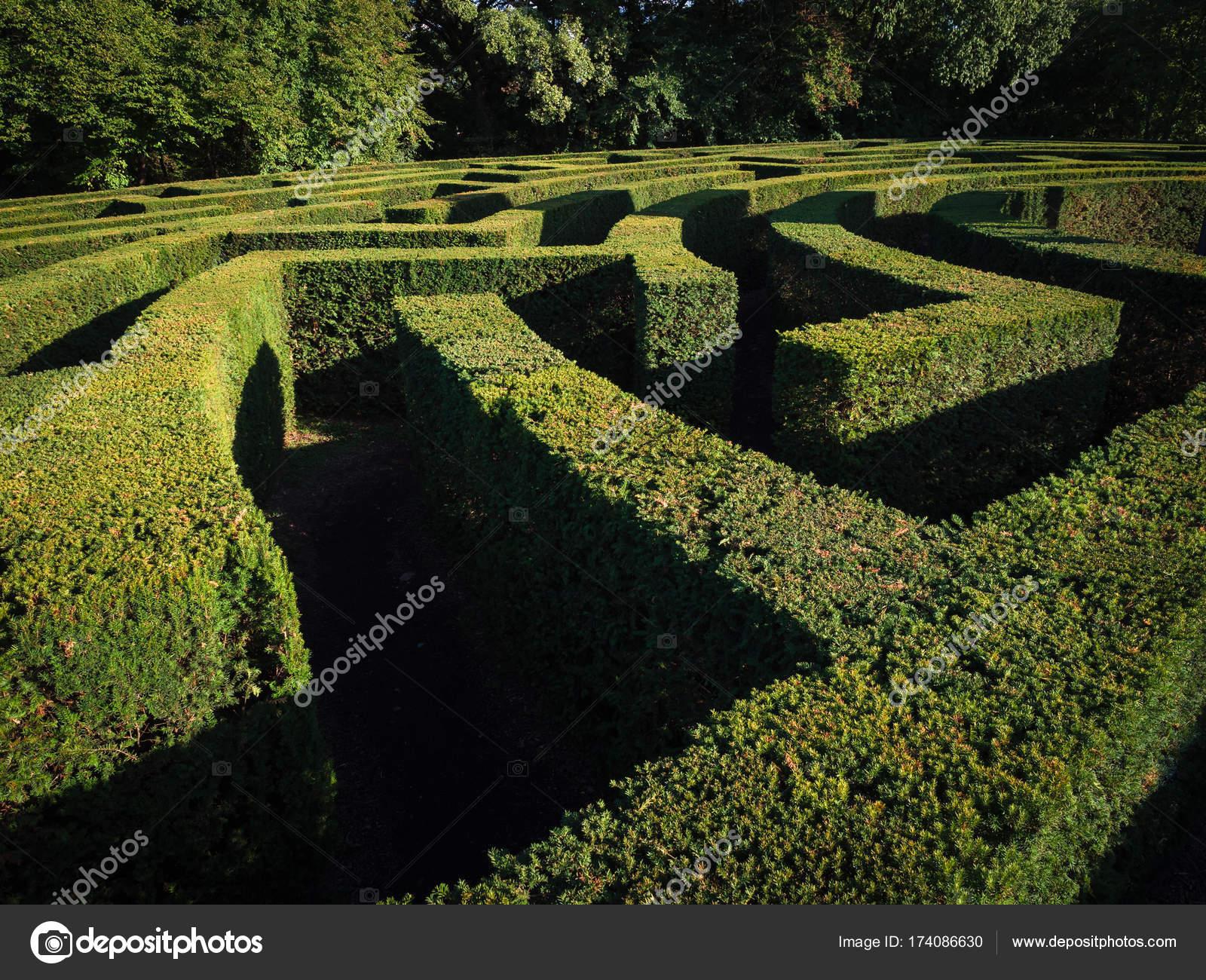 Green bushes labyrinth, landscape gardening design — Stock Photo on spiral labyrinth garden, labyrinth herb garden, labyrinth garden kit, lavender labyrinth garden, labyrinth flower garden, labyrinth meditation garden, labyrinth garden designs, spiritual labyrinth garden,