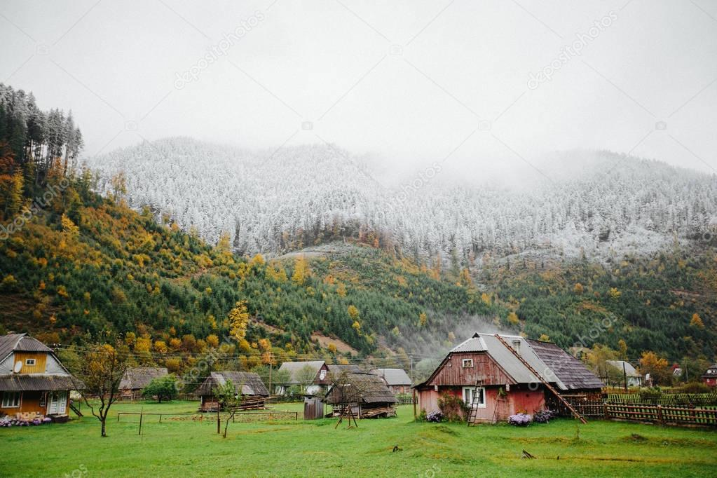 Houses in Forest with fog and snow high in the mountains