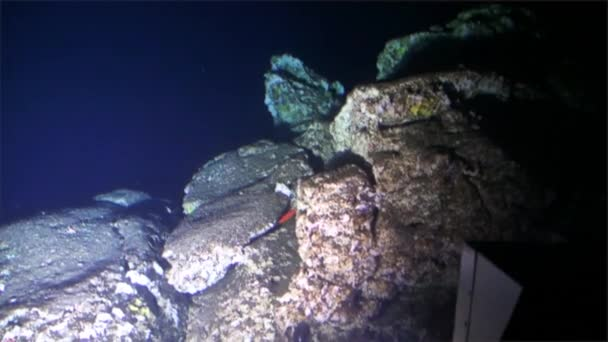 Podmořské hlubinné hory pohled z ponorky Tichého oceánu Cocos Island.
