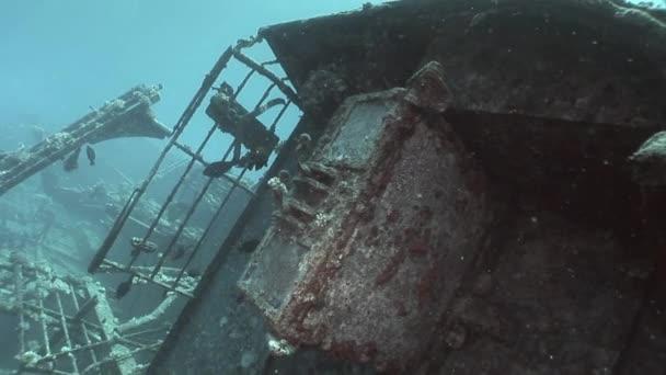 Ryby v Salem Express vraky lodí pod vodou v Rudém moři v Egyptě