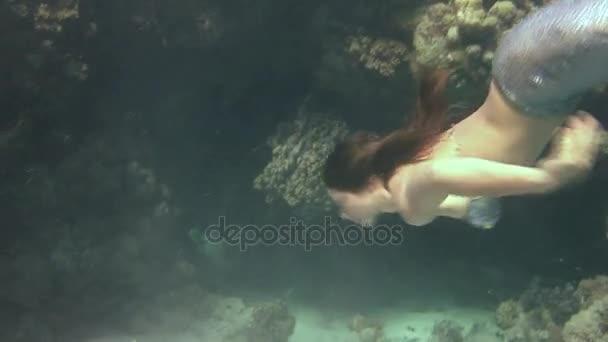 Unterwassermodell Freitaucher schwimmt im Meerjungfrauen-Kostüm im roten Meer.