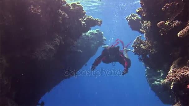 Unterwasser-Modell Freitaucher in rotem Kleid auf dem Hintergrund von Korallen im roten Meer.