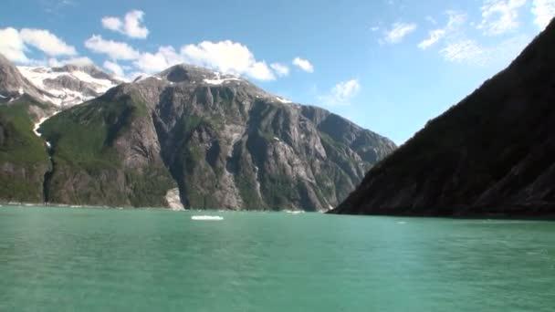 Pohybující se na ledové kry na pozadí hory a vody Tichého oceánu na Aljašce
