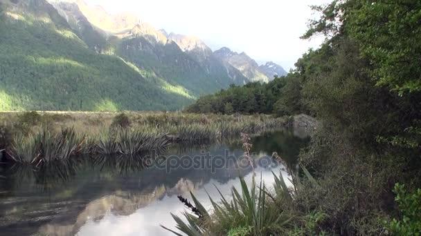 A zöld-hegység egyedülálló tó nyugodt víz, Új-Zéland.