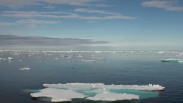 Im Ozean der arktischen Eis