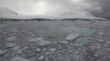 Ice glacier iceberg and snow coastline in ocean of Antarctica.