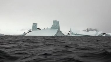 Huge unique glacier iceberg in ocean of Antarctica.