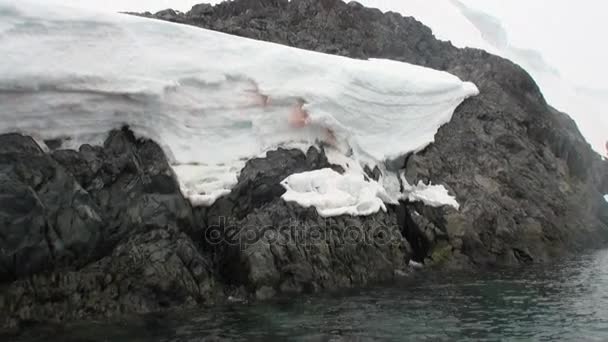 Krev na sněhu pobřeží v oceánu Antarktidy