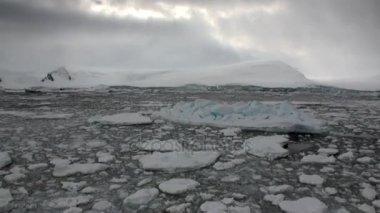 Ice movement and snow coastline in ocean of Antarctica.