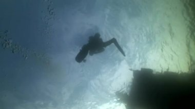 Scuba diver silhouette on background of reflection sunlight underwater.