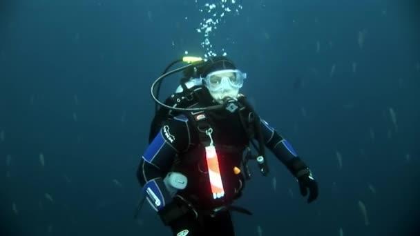 Scuba divers underwater on background of school fish.