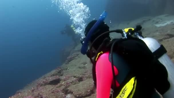 Scuba divers underwater on background of seabed.
