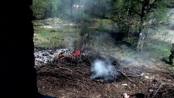 Männer in Militäruniformen löschen Feuer im Wald.