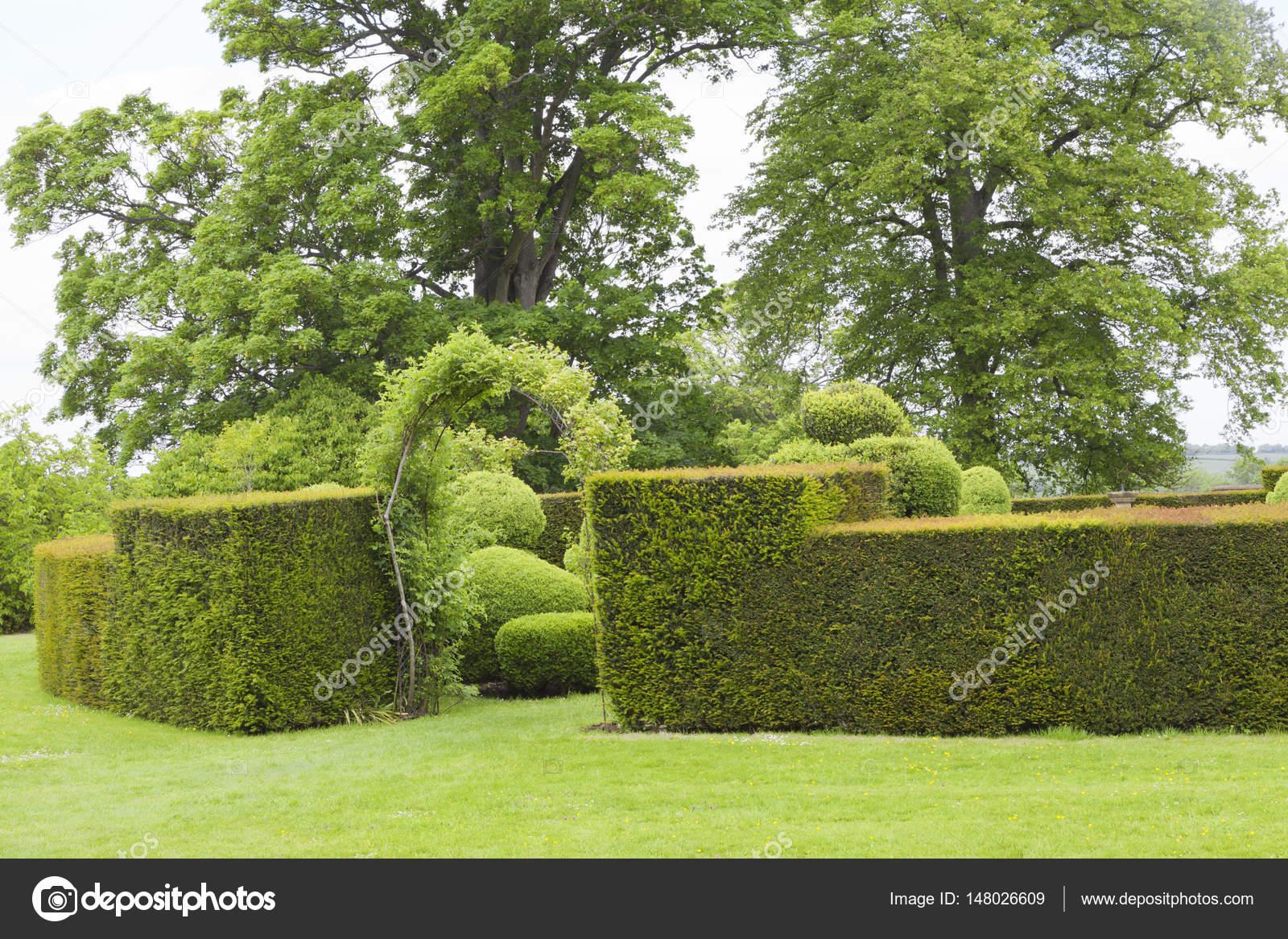 Jardin d\'été avec clôture de haie taillée et arcade pour un jardin ...