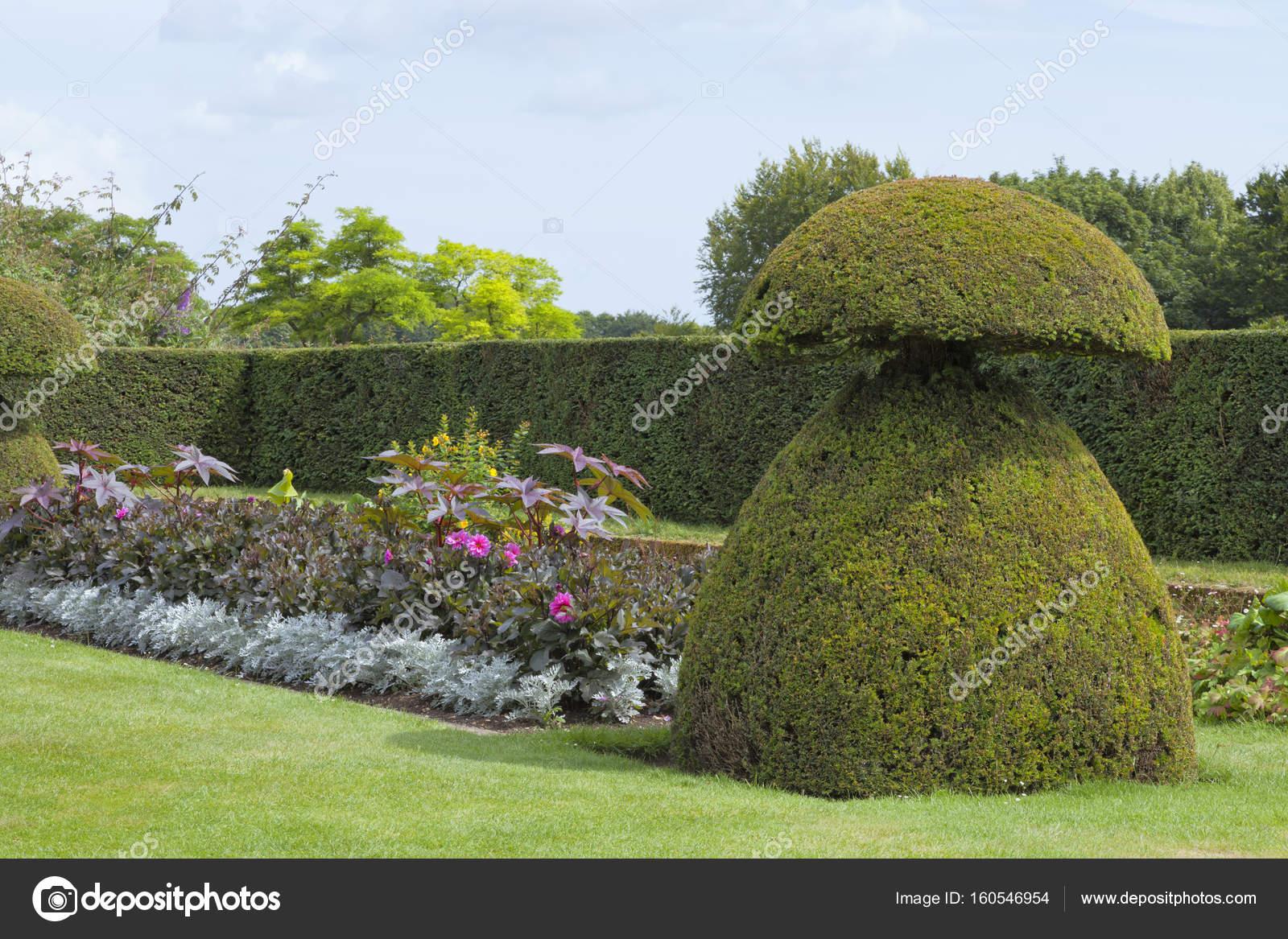 topiary garten mit sommerpflanzen, sträucher, bäume, hohe hecke