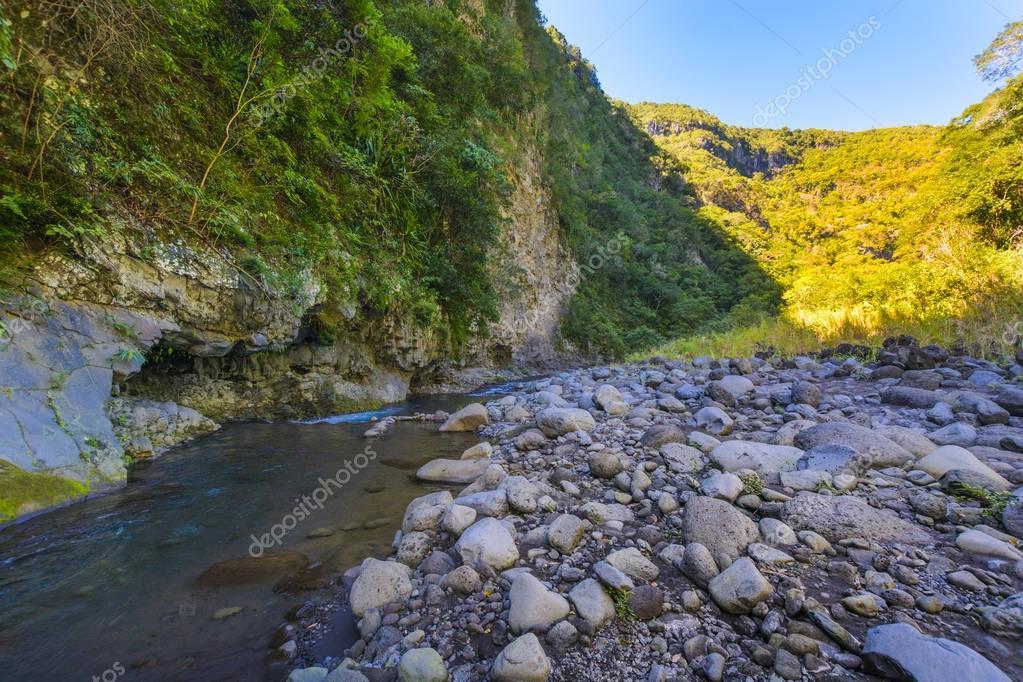 River at Bras de la Plaine at Reunion Island
