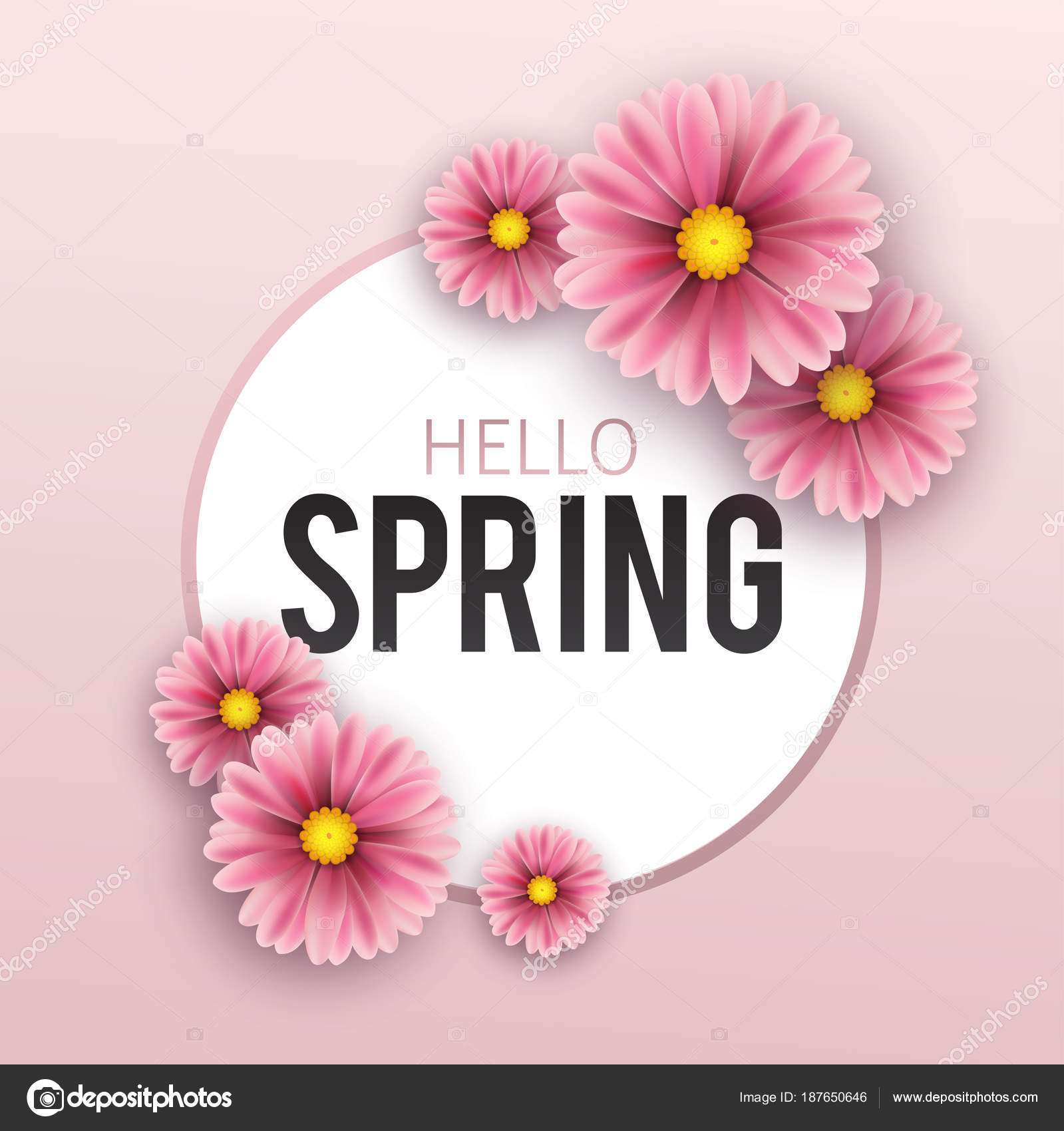 Hello Spring Floral Greeting Card Flowers Banner With Realistic