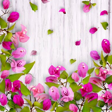 floral background with tropical flowers