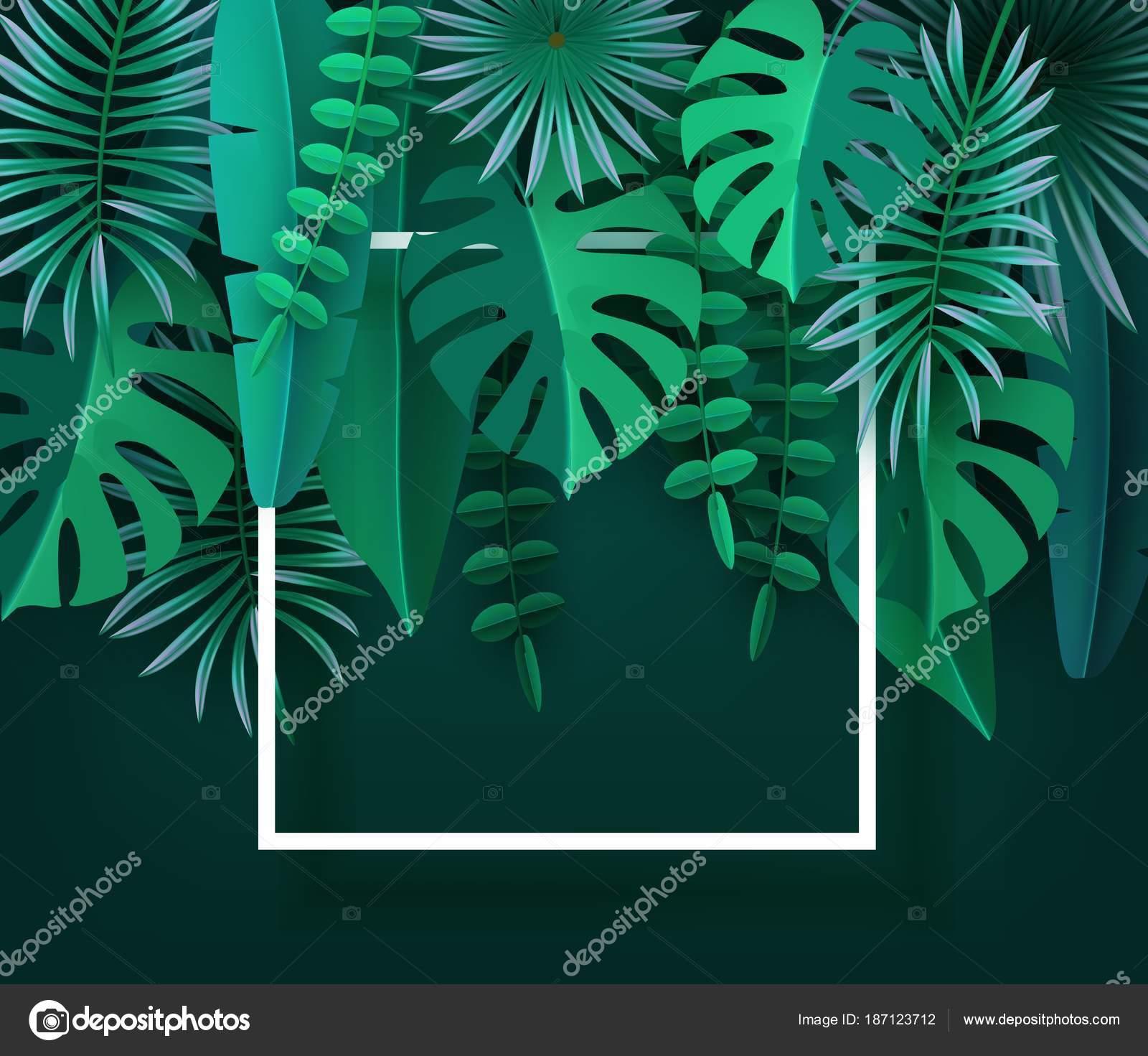 Hojas tropicales y plantas. Fondo abstracto verde con follaje ...