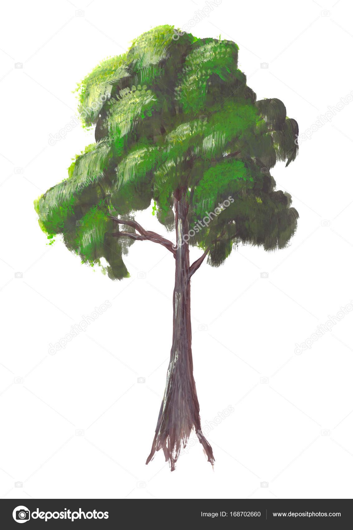 Hand Gezeichnet Acryl Lebendige Sommergrün Baum Isoliert Auf