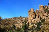 Vicino a formazione di Pipe Organ in Chiricahua National Monument, Arizona