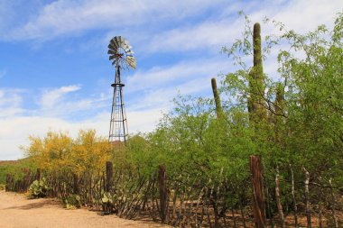 Windmill and Butterfly Garden on La Posta Quemada Ranch in Colossal Cave Mountain Park