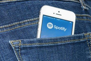 Spotify App on iPhone SE