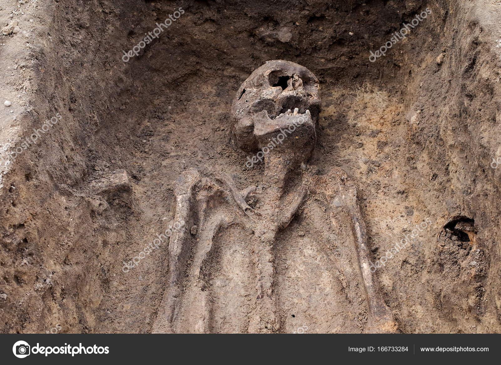 Depositphotos Stock Photo Archaeologist Excavating Ancient Burial