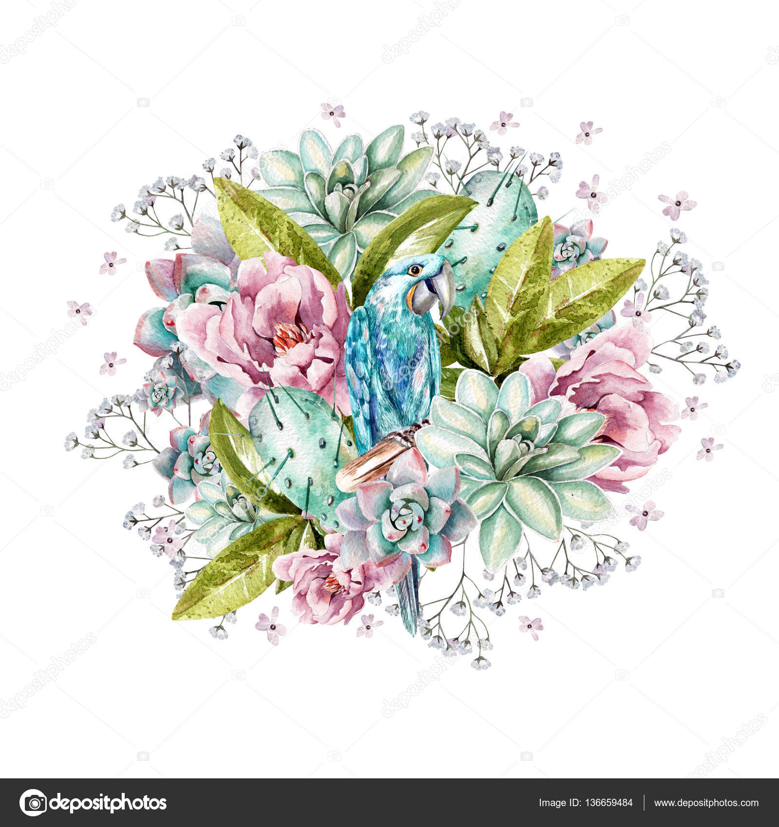 Colorful Watercolor Bouquet With Peonies Succulents Cactus Wildflowers And Blue Parrot Stock Photo Image By C Knopazyzy 136659484