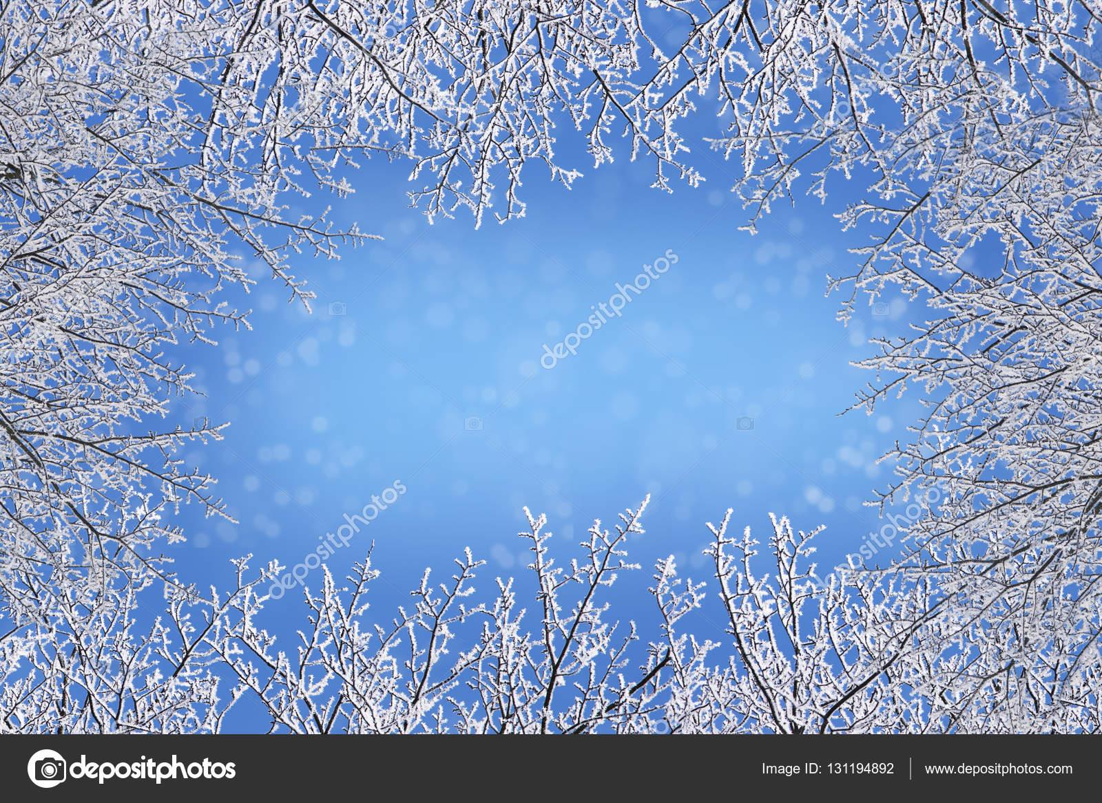 Marco de ramas desnudas de invierno cubierto con cristales de hielo ...